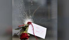 """""""¿En nombre de quién?"""", dice el mensaje de esta rosa que  fue dejada en el orificio que dejó una bala en el vidrio en uno de los lugares de los ataques terroristas que sucedieron en París este viernes. Social Issues, Christmas Wreaths, Gift Wrapping, Holiday Decor, Gifts, Pink, Tour Eiffel, Friday, Towers"""