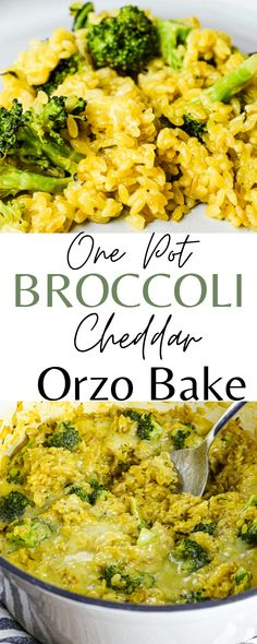 Such a FABULOUS vegetarian dinner! One Pot Broccoli Cheddar Orzo bake! Easy and healthy dinner the whole family loves so much. WINNER. Must try healthy dinner recipe idea! One Pot Vegetarian, Vegetarian Breakfast Recipes, Clean Eating Recipes, Eating Healthy, Healthy Food, Small Pasta, Broccoli Cheddar, Happy Healthy, Orzo