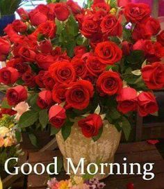 Good morning nik. Send this flowers for you. Have a beautiful saturday :)