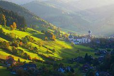 Presse | Schwarzwald Tourismus GmbH