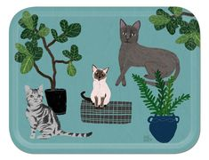 Cat Tray, serving tray, cat tableware, Anne Bentley