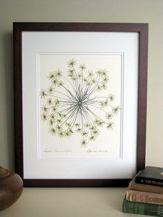 pressed flower art - Google Search