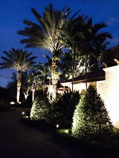 17 Best Landscape Lighting In Miami Fort Lauderdale Images