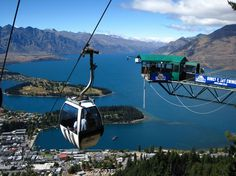 Step onto the Wild Side with Queenstown
