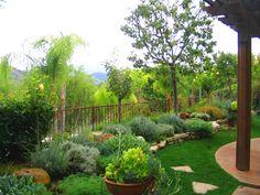 kids garden designs | Shirley Bovshow Garden Design mediterranean style garden