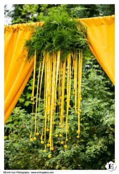 yellow craspedia wedding arch-or any event that needs an entry way Wedding Ceremony Flowers, Ceremony Arch, Wedding Ceremony Decorations, Flower Decorations, Archway Decor, Yacht Wedding, Floral Chandelier, Engagement Celebration, Buffet