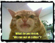 Out of coffee.....