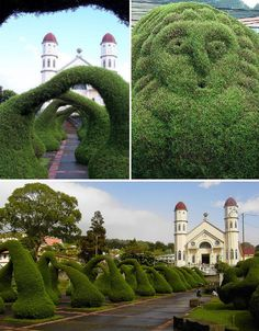 Francisco Alvarado Park, Zarcero, Costa Rica. Abstract shapes, arches and the faces of strange creatures grow out of the courtyard at Parque Francisco Alvarado, found in the town center of Zarcero in Costa Rica. The park's topiary garden has been shaped into these fascinating shapes by the same man since the 1960s.