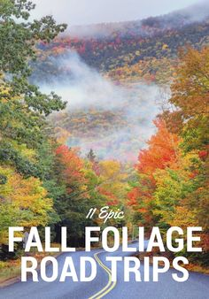 When it comes to clichéd fall faves, we'll cop to hating on Pumpkin Spice lattes and Ugg boots, but at the same time, no earthly force (or dramatic eye roll) could separate us from our choice seasonal indulgence: leaf peeping. Here, 11 places to marvel at autumn's killer colors.