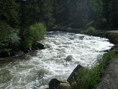 """The River"" (South Platte) In CO running high in the spring! My place to go breath & reconnect"