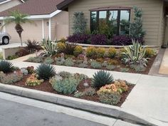 Fresh and beautiful front yard lanscaping ideas (75)