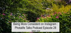 Being More Consistent on Instagram : Photalife Talks Episode 28