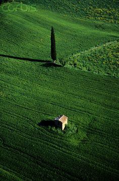 Field In Siena Italy