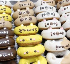 Donuts from Japan