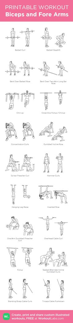Biceps and Fore Arms: my custom printable workout by Biceps Workout, Gym Workouts, At Home Workouts, Cardio Yoga, Fitness Diet, Fitness Motivation, Health Fitness, Printable Workouts, Back And Biceps
