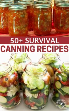 50 Survival Canning Recipes — Canning is probably my most favorite way of pres. - 50 Survival Canning Recipes — Canning is probably my most favorite way of preserving food. Canning Soup Recipes, Pressure Canning Recipes, Canning Tips, Pressure Cooking, Canning Salsa, Canning Food Preservation, Preserving Food, Preserving Pumpkins, Canning Vegetables