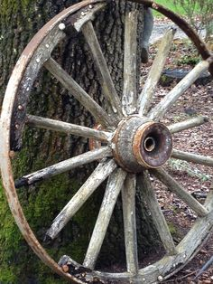 An old wagon wheel from the Old Toll Road in Calistoga. It sits outside the winery.