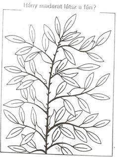AtLiGa - Képgaléria - Faliújság - Madarak, fák napja
