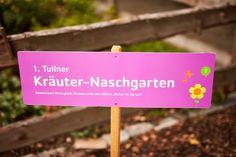 Urban Gardening: der Tullner Kräuter-Naschgarten Birthday Candles, Gardening, Edible Plants, Fresh Fruits And Vegetables, Little Gardens, Natural Garden, Harvest, Lawn And Garden, Horticulture
