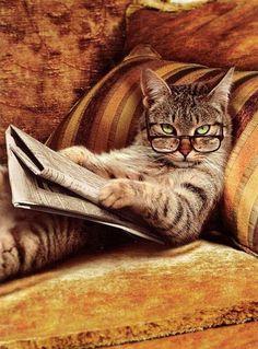 Estoy tan ocupado y no me dejas concentrar