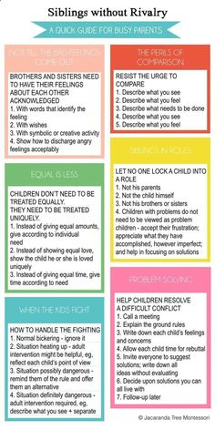 Siblings Without Rivalry on Child Led Life Siblings Without Rivalry Quick Guide for Busy Parents Best Parenting Tips Gentle Parenting, Parenting Advice, Kids And Parenting, Parenting Classes, Parenting Issues, Peaceful Parenting, Parenting Websites, Parenting Styles, Parenting Workshop