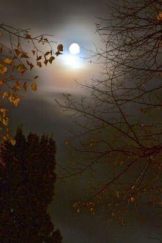 Ciaula scopre la luna Pirandello