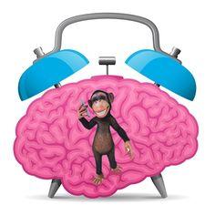 Complexe en lastige taken veroorzaken spanning in ons brein. Ons brein vertaalt dit naar angst, een bedreiging met uitstellen als gevolg. Wat kan je doen?