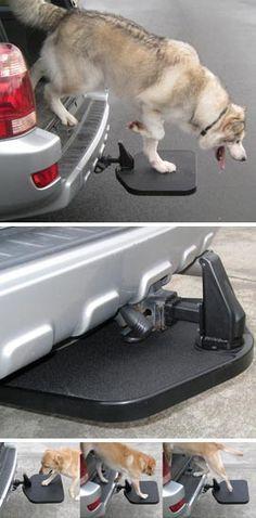 Pratique cette petite marche pour aider les chiens plus âgés à monter et descendre de la voiture...