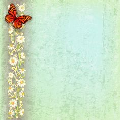 abstract grunge green background with butterfly and flowers