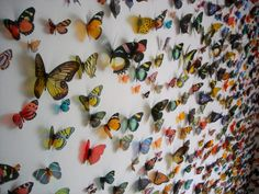 Swarm by Kristi Malakoff uses 6,000 color copies of butterflies on transparent material.