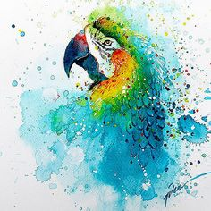 """Parrot"" painting by Tilen Ti Watercolor 15August2014…"