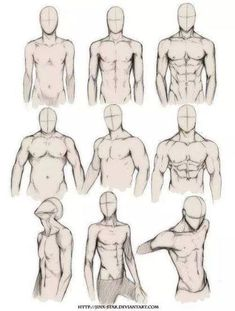 Torsos masculinos