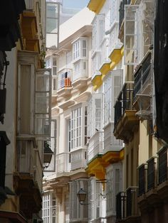 Street in Cadiz, Andalucía, Spain.  http://www.costatropicalevents.com/en/costa-tropical-events/andalusia/welcome.html