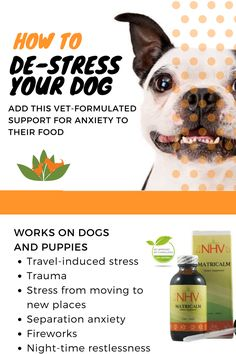 Natural remedy to de-stress your dog - Help reduce aggression and anxiety in your dog with Matricalm, a natural herbal product designed to help reduce excitability in your pet. Dogs can become anxious or aggressive when exposed to other animals or to people they are unfamiliar with. Separation from an owner or a move to a new home can also trigger troubling symptoms include excessive barking, chewing, and inappropriate urination.