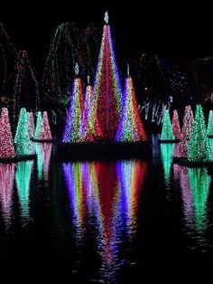 WildLights at the Columbus Zoo and Aquarium includes an incredible light display surrounding the pond synchronized to holiday music.