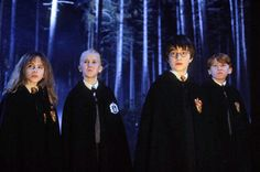 Hermione, Draco, Harry and Ron