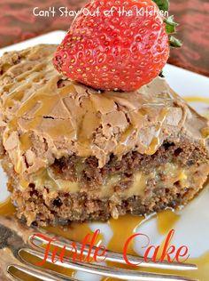 Turtle Cake - IMG_8886.jpg