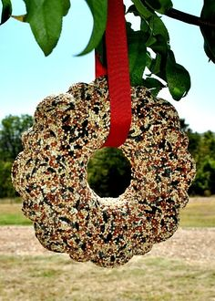 Bird Seed Wreath Ornaments  4c birdseed, 3/4c flour, 1/2c water, 3T corn syrup, 1 pack plain gelatin, cooking spray for the mold.