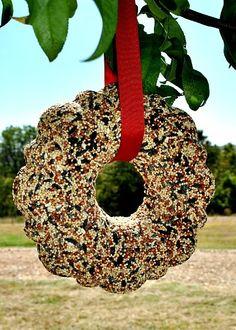 DIY Bird Seed Wreath!