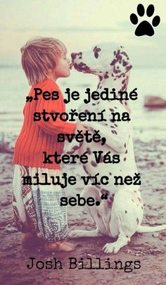 Zvíře a láska New Quotes, Cute Quotes, Motivational Quotes, Inspirational Quotes, Wallpaper Quotes, Beautiful Words, Kids And Parenting, Motto, Animals And Pets