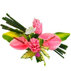 F te des m res bouquet de fleurs exotiques d licatesse for Bouquet exotique