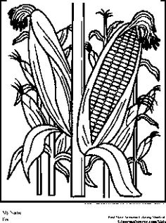 Ffa mural on pinterest farm coloring pages for Ffa coloring pages