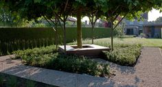 Tuinarchitect Stefaan Willems - Inrichting - Concept Greenarchitects - Zitbank -