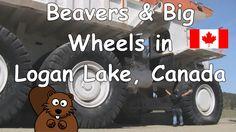 Beavers & Big Wheels in Logan Lake, British Columbia, Canada