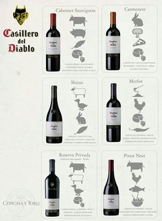 The Different Types of Wine Wine And Liquor, Wine And Beer, Wine Drinks, Cocktail Drinks, Guide Vin, Wine Guide, Pinot Noir, Cabernet Sauvignon, Different Types Of Wine