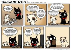 the GaMERCaT :: Missing Piece