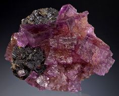 Plate of raspberry colored Fluorite with Sphalerite.