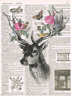 Deerroses.Collage.Fantasy. Antique Book Pages