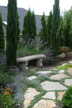 Great bench for day dreaming.