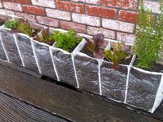 Shoe organizer planter